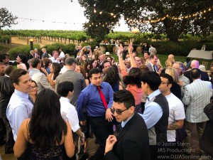 Gaine-Vineyard-Wedding-DJ-in-Santa-Barbara_Santa-Barbara-Wedding-DJ-5