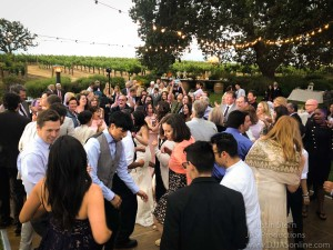 Gaine-Vineyard-Wedding-DJ-in-Santa-Barbara_Santa-Barbara-Wedding-DJ-7