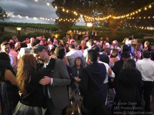Gaine-Vineyard-Wedding-DJ-in-Santa-Barbara_Santa-Barbara-Wedding-DJ-8