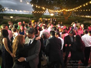 Gaine-Vineyard-Wedding-DJ-in-Santa-Barbara_Santa-Barbara-Wedding-DJ-9